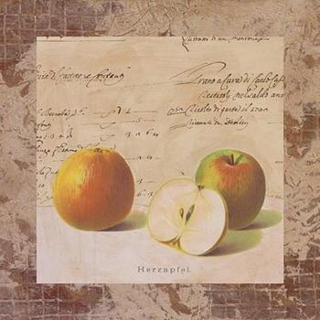Arte Apple Archive