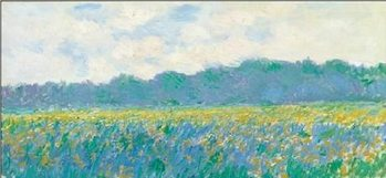 Impressão artística Field of Yellow Irises at Giverny