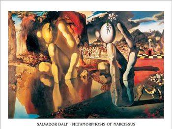 Impressão artística Metamorphosis of Narcissus, 1937