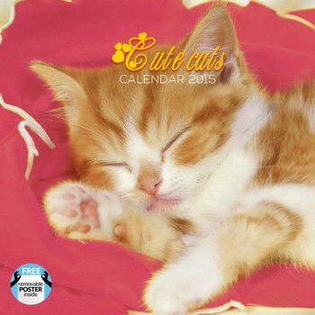 Calendar 2017 Cats