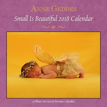 Calendário 2018 Anne Geddes - Small is Beautiful