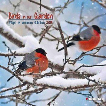Calendário 2018 Birds in our Garden