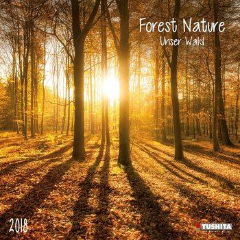 Calendário 2018 Forest Nature