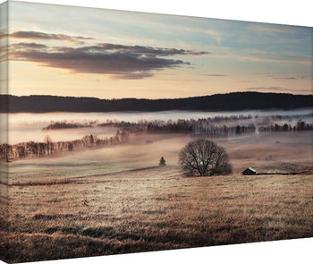 Andreas Stridsberg - Misty Morning Canvas Print