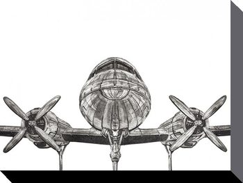 Barry Goodman - Aeroplane Canvas-taulu