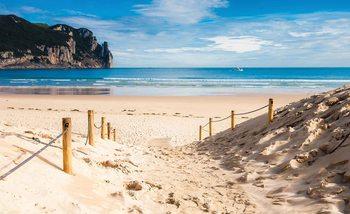 Papel de parede Beach Path Nature Sea Sand Cliff