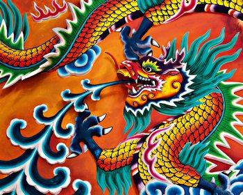 Decoração de parede Dragon