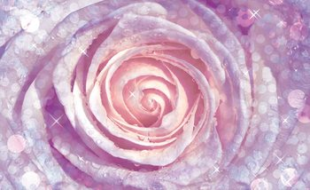 Papel de parede Flowers Rose Nature