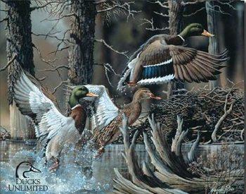 DU - beaver pond Plaque métal décorée