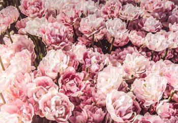 Glass Art  Sea Of Flowers