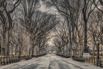 Juliste Assaf Frank - New York Central Park
