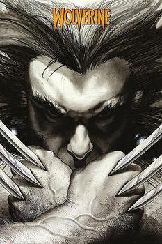 Juliste Marvel Comics - Wolverine claws