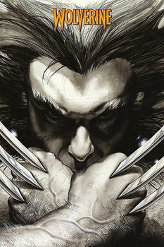 Juliste Marvel Comics - Wolwerine claws