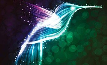 Bird Hummingbird Neon Colours Valokuvatapetti