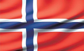 Kuvatapetti, TapettijulisteFlag Norway