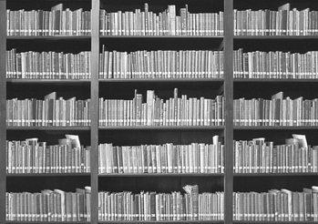 Kirjahylly Kuvatapetti