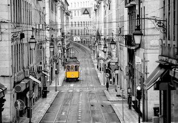 Lissabon Kuvatapetti, Tapettijuliste