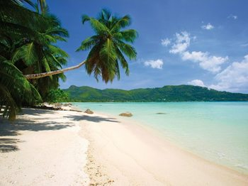 Sunny Beach Kuvatapetti, Tapettijuliste