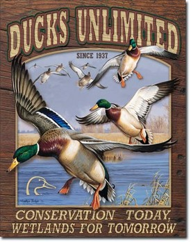 DUCK UNLIMITED - conservation today Metal Sign