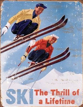 Metalllilaatta Ski - Thrill of a Lifetime