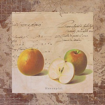Apple Archive Art Print