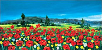 Cajati - valle di papaveri Art Print