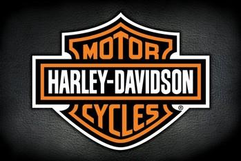 Pôster Harley Davidson - logo