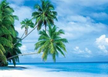 Pôster Maledives - fihalhohi island