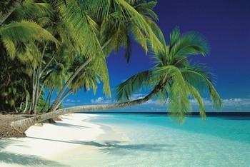 Pôster Maledives