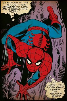 Spider-Man - Breathing Spell Poster