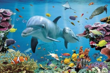 Tropical uderwater ocean Poster, Art Print