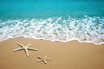Quadro em vidro Sea - Stars in the Sand