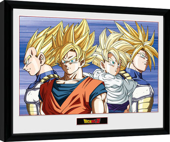 Dragon Ball Z - Group Poster Emoldurado