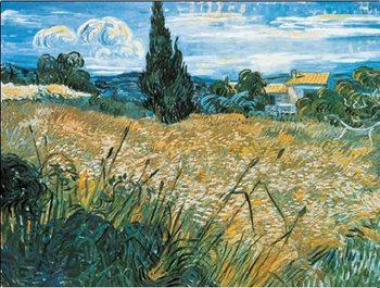 Reprodução do quadro  Green Wheat Field with Cypress, 1889