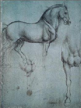 Reprodução do quadro Study of Horses