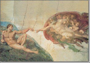 Reprodução do quadro The Creation of Adam