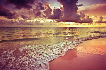 Tableau sur verre Pink Beach