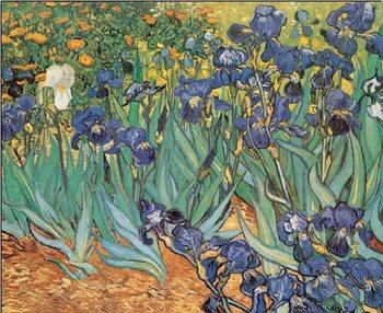 Irises, 1889 Taide