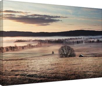 Tela Andreas Stridsberg - Misty Morning