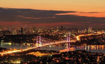 City Skyline Istanbul Bosphorus Poster Mural