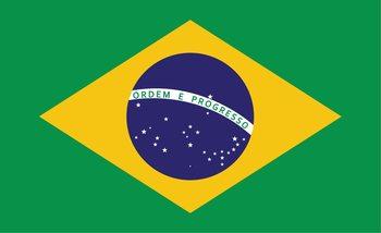 Flag Brasil Poster Mural