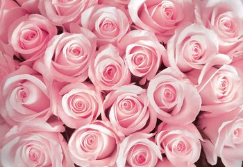 Fleurs Roses Poster Mural