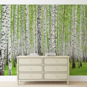 Forest and Woods Poster Mural