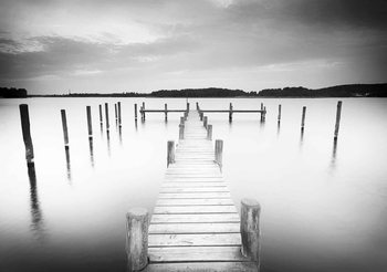 Nature Water Lake Jetty Noir Blanc Poster Mural