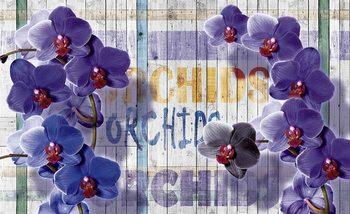 Orchidées Fleurs Planchetes en bois Poster Mural