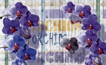 Orchids Flowers Wooden Planks Poster Mural