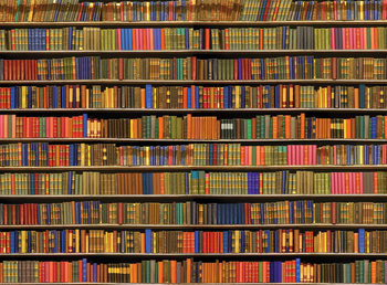 Bookshelf - Colored Wallpaper Mural