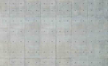 Cement Wal Holes Wallpaper Mural