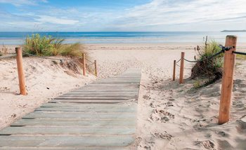 Path Beach Sand Nature Wallpaper Mural