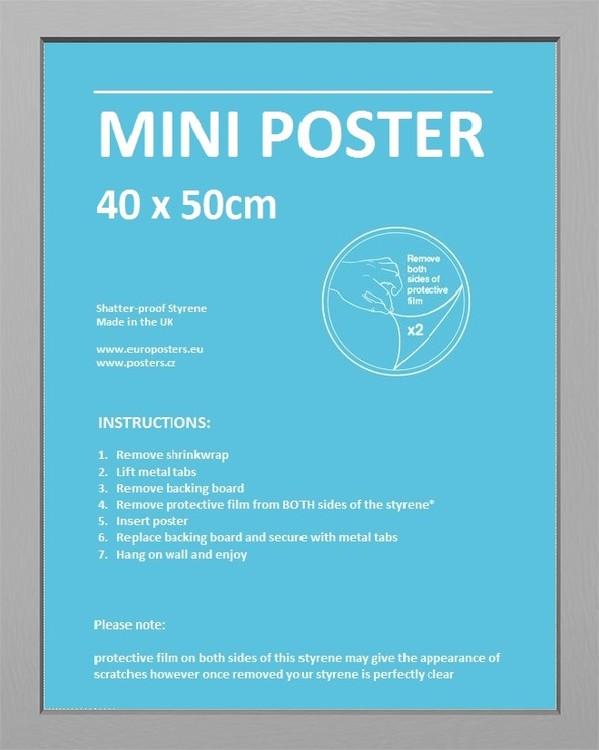 Frame - Mini poster 40x50 cm Silver Fibreboard